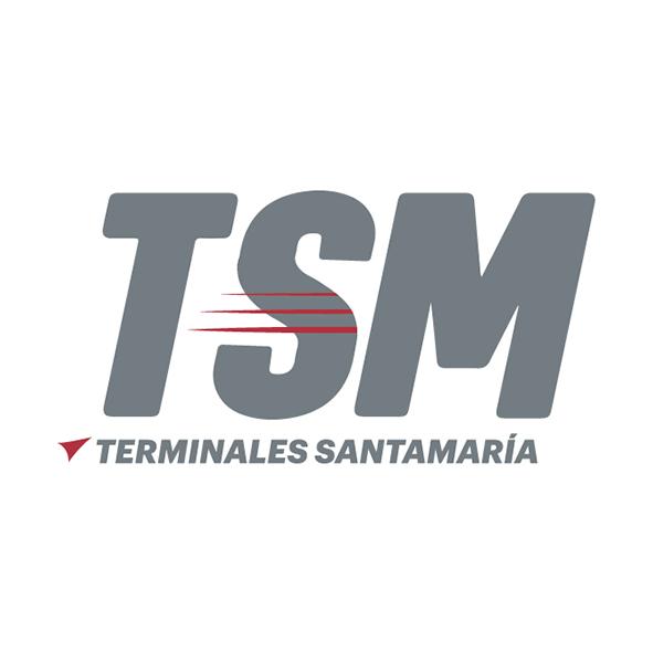 10-tsm